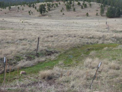 Photo of Lot 21 The  Ranch At Alpine, Alpine, AZ 85920 (MLS # 229519)