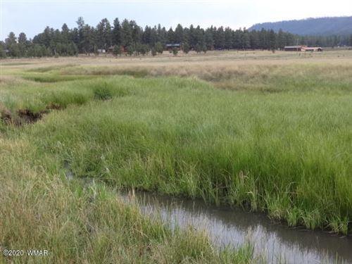 Photo of Lot 22 The  Ranch At Alpine, Alpine, AZ 85920 (MLS # 229520)