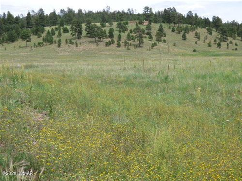 Photo of Lot 25 The  Ranch At Alpine, Alpine, AZ 85920 (MLS # 229524)