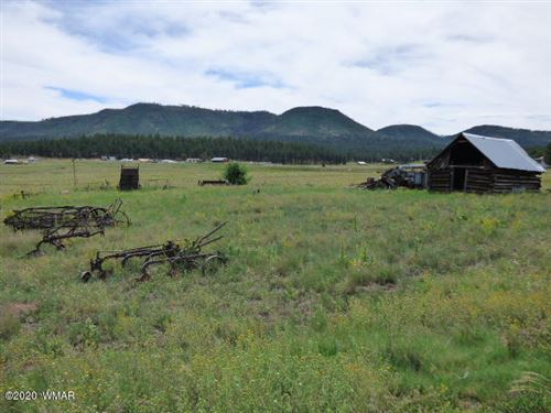 Photo of Lot 26 The  Ranch At Alpine, Alpine, AZ 85920 (MLS # 229525)