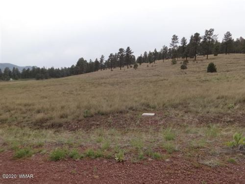 Photo of Lot 28 The  Ranch At Alpine, Alpine, AZ 85920 (MLS # 229526)