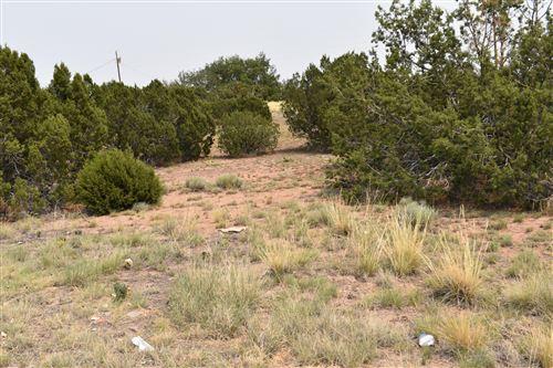 Photo of 72 County Road 5052, Concho, AZ 85924 (MLS # 231529)