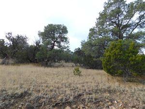 Photo of TBD Marion Drive, Eagar, AZ 85925 (MLS # 222531)