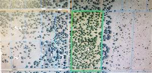 Photo of 5 Acres In Vernon #36, Vernon, AZ 85940 (MLS # 225540)