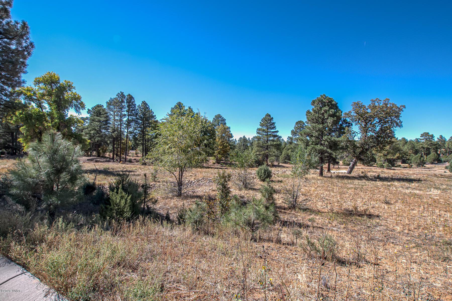 Photo for 180 E Summerberry Drive, Show Low, AZ 85901 (MLS # 232548)