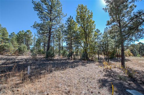 Photo of 201 E Summerberry Drive, Show Low, AZ 85901 (MLS # 232549)