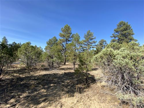 Photo of 4700 W Hawthorn Road, Show Low, AZ 85901 (MLS # 232558)