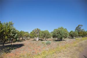 Photo of 2339 Voyager Circle, Overgaard, AZ 85933 (MLS # 225563)