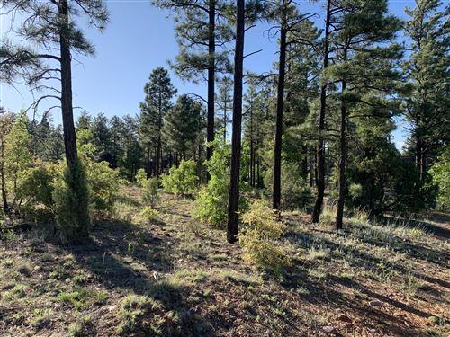 Photo of 101 W Pine Haven Circle, Show Low, AZ 85901 (MLS # 229574)