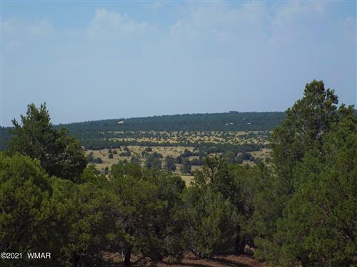 Photo of TBD 106-55-002A,B,C, and D, Vernon, AZ 85940 (MLS # 236577)