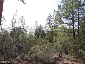 Photo of TBD Lot B STEWART Drive, Lakeside, AZ 85929 (MLS # 208581)