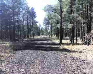 Photo of Lot D TBD Thunderhorse Road, Lakeside, AZ 85929 (MLS # 205582)