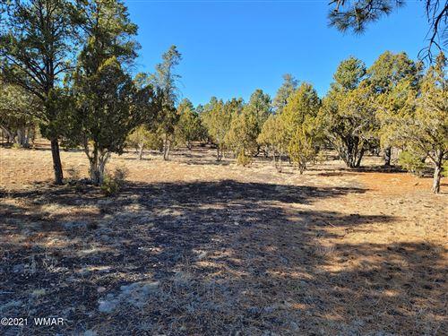 Photo of 2752 Challenger Drive, Overgaard, AZ 85933 (MLS # 233584)