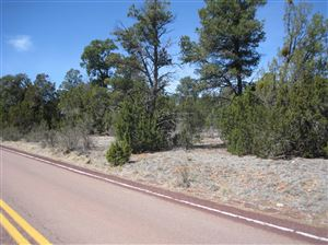 Photo of 2901 Buckskin Road Road, Overgaard, AZ 85933 (MLS # 226586)