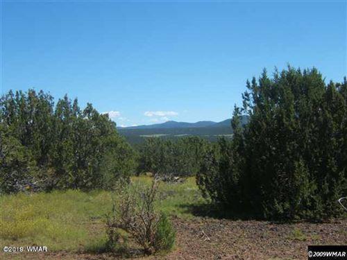 Photo of TBD Highway 60, Vernon, AZ 85940 (MLS # 236595)