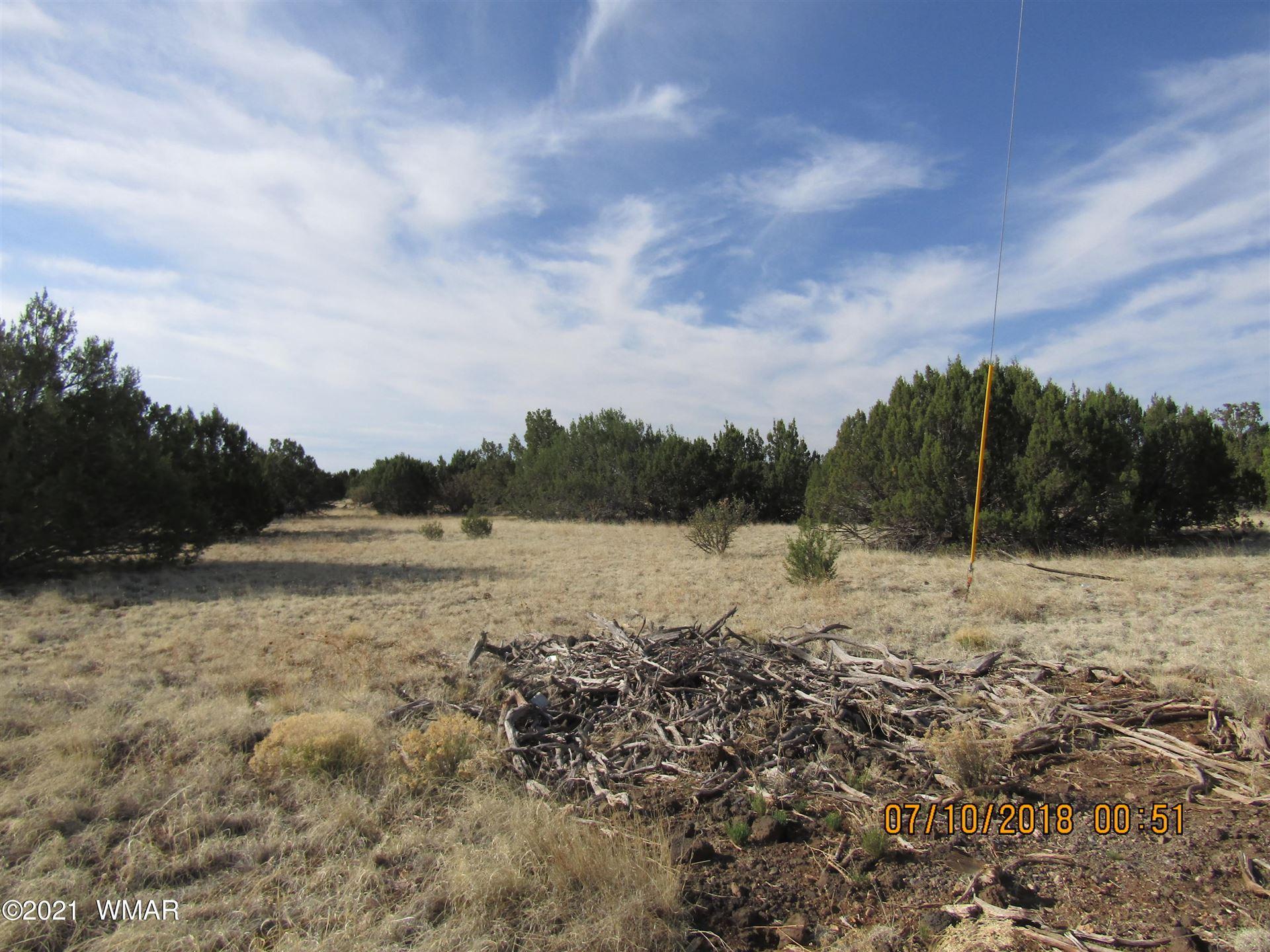 Photo for p/o 2606 Parson Lane, Shumway, AZ 85901 (MLS # 208603)