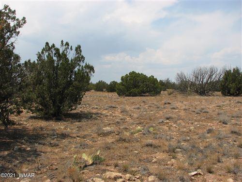 Photo of Sec 17 Chevelon Retreat, T14, R17E, Heber, AZ 85928 (MLS # 236655)