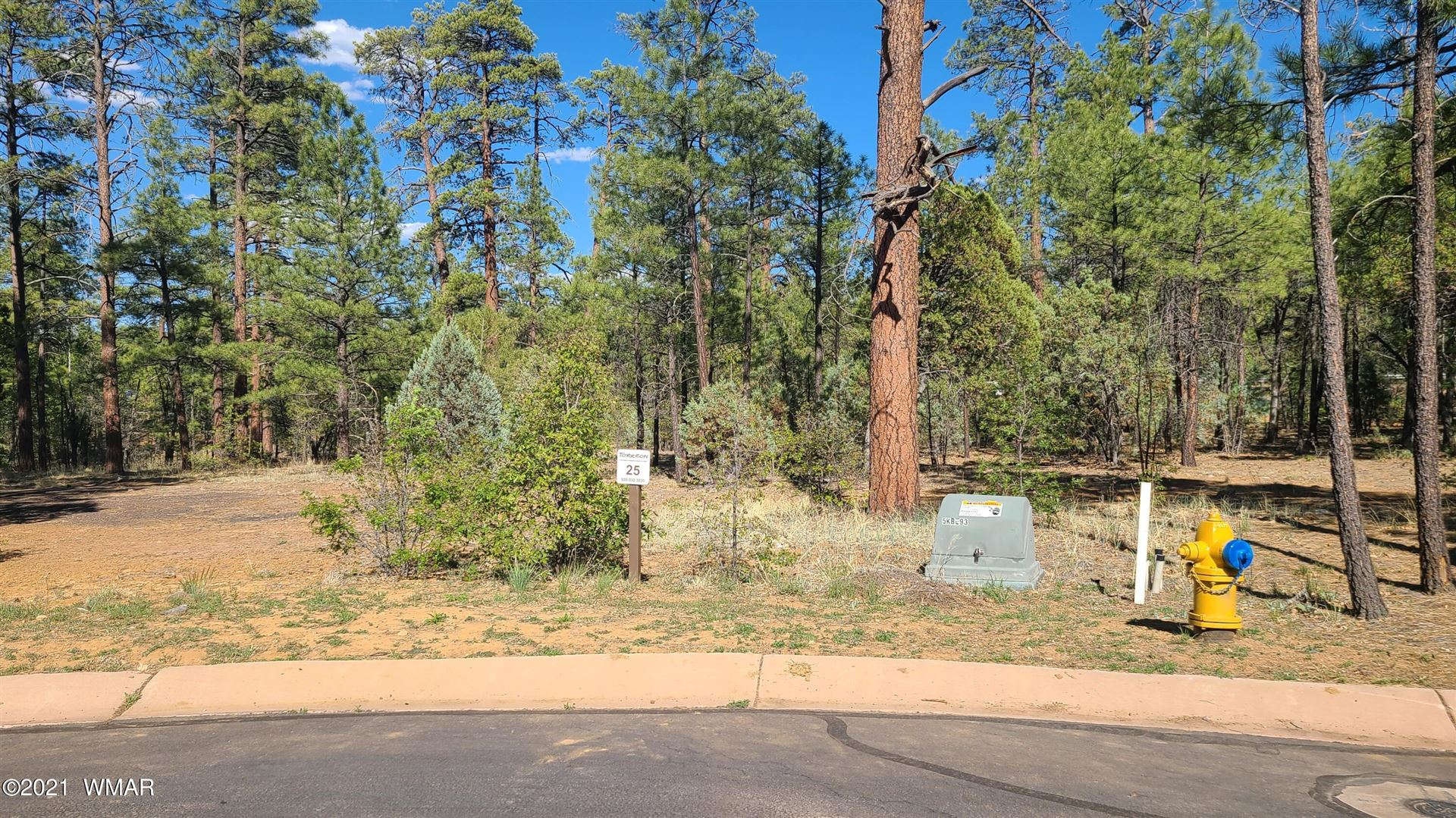 Photo for 2341 Pinegrass Road, Show Low, AZ 85901 (MLS # 235666)