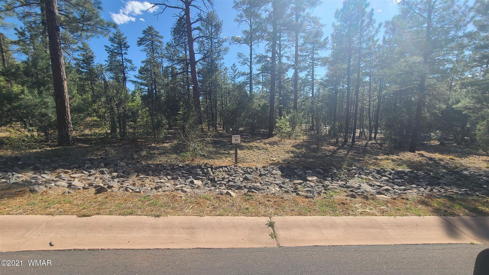 Photo for 2440 Pinegrass Road, Show Low, AZ 85901 (MLS # 235668)