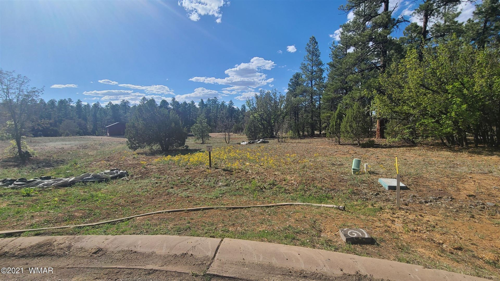 Photo for 2541 Pinegrass Road, Show Low, AZ 85901 (MLS # 235669)