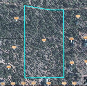 Photo of 3227 Jeep Trail, Overgaard, AZ 85933 (MLS # 225676)