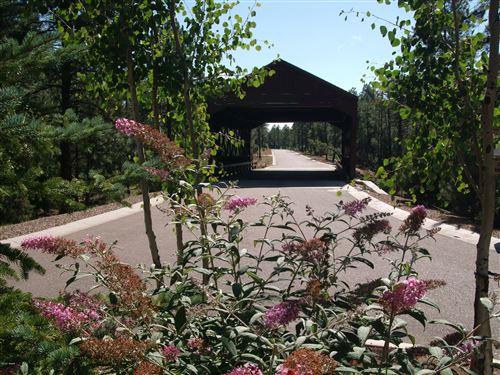 Photo of 1134 W Big Springs Trail, Lakeside, AZ 85929 (MLS # 232696)