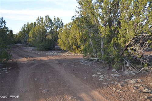 Photo of TBD N of County Road 3114, Vernon, AZ 85940 (MLS # 234705)