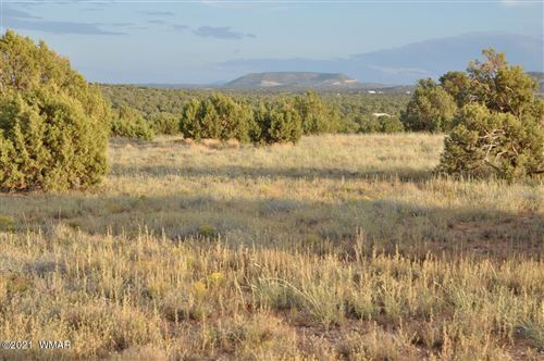Photo of 4217 Clydesdale Road, Snowflake, AZ 85937 (MLS # 237711)