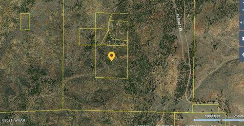 Photo of 4305 FS 139A, Clay Springs, AZ 85923 (MLS # 236713)