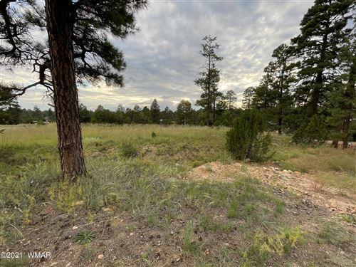 Photo of 2036 State Road 277 Highway, Overgaard, AZ 85933 (MLS # 237718)