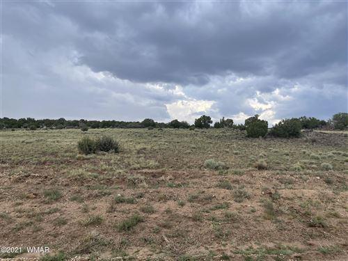 Photo of lot 31 Windsor Valley Ranch, Concho, AZ 85924 (MLS # 236726)