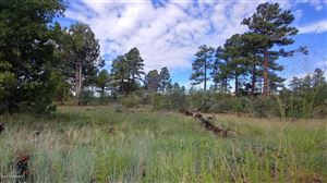 Photo of 5139 Highway 260, Clay Springs, AZ 85923 (MLS # 221746)