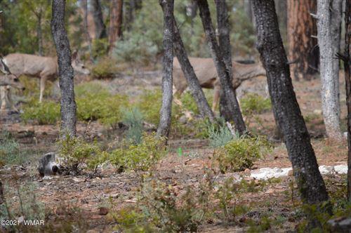 Tiny photo for 2261 Horseshoe Loop, Show Low, AZ 85901 (MLS # 237747)