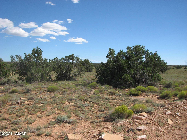Photo for Lot 305 Chevelon Canyon Ranch, Heber, AZ 85928 (MLS # 237749)