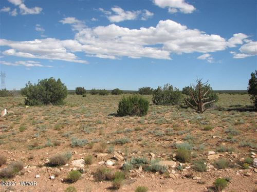 Photo of Lot 306 Chevelon Canyon Ranch, Heber, AZ 85928 (MLS # 237752)