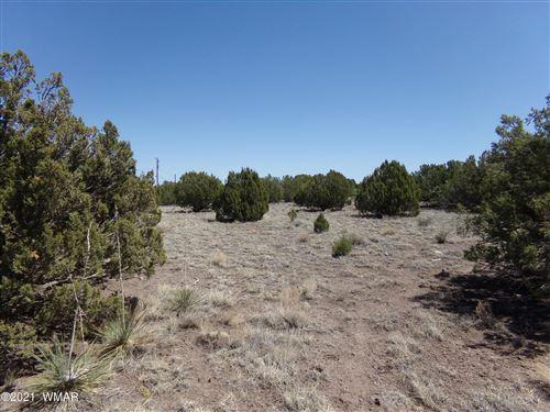 Tiny photo for TBD Silver Lake Boulevard, Show Low, AZ 85901 (MLS # 234767)