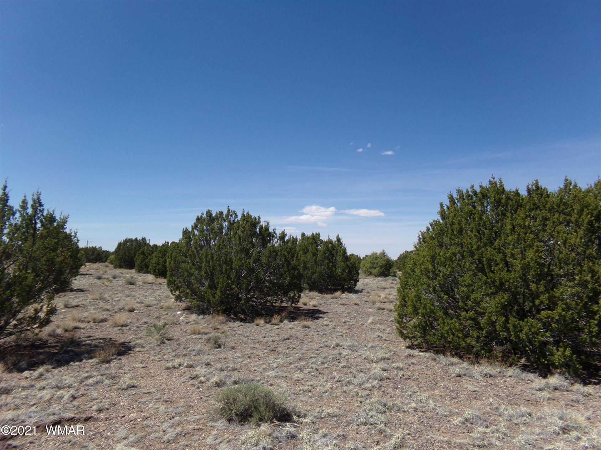 Photo for TBD Silver Lake Boulevard, Show Low, AZ 85901 (MLS # 234767)