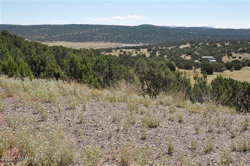 Photo of 14 County Road 8249, Concho, AZ 85924 (MLS # 237778)