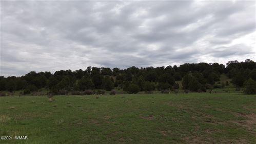 Photo of TRACT C HWY 180, Nutrioso, AZ 85932 (MLS # 236781)