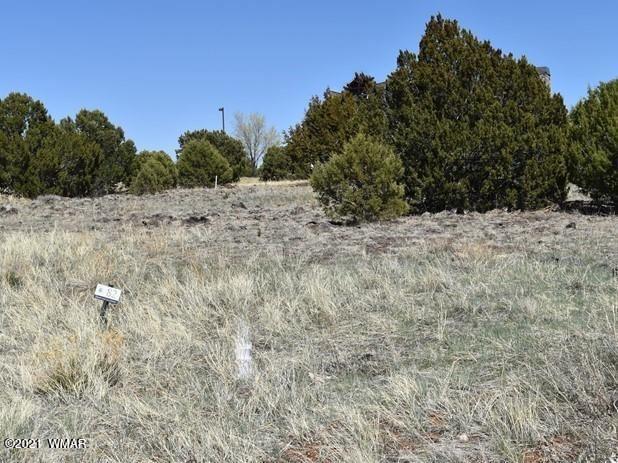 Photo for 581 S Rock Ridge Drive, Show Low, AZ 85901 (MLS # 234796)