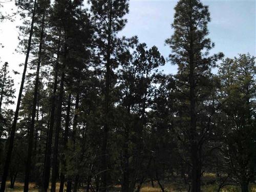 Photo of 9455 Porter Mountain Road, Lakeside, AZ 85929 (MLS # 231801)