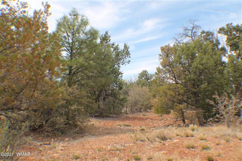 Tiny photo for TBD Timber Ranch Road, Show Low, AZ 85901 (MLS # 234810)