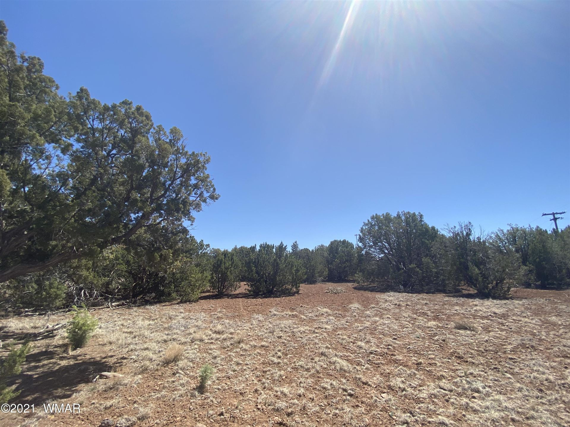 Photo for 1826 Silver Lake Boulevard, Show Low, AZ 85901 (MLS # 234824)