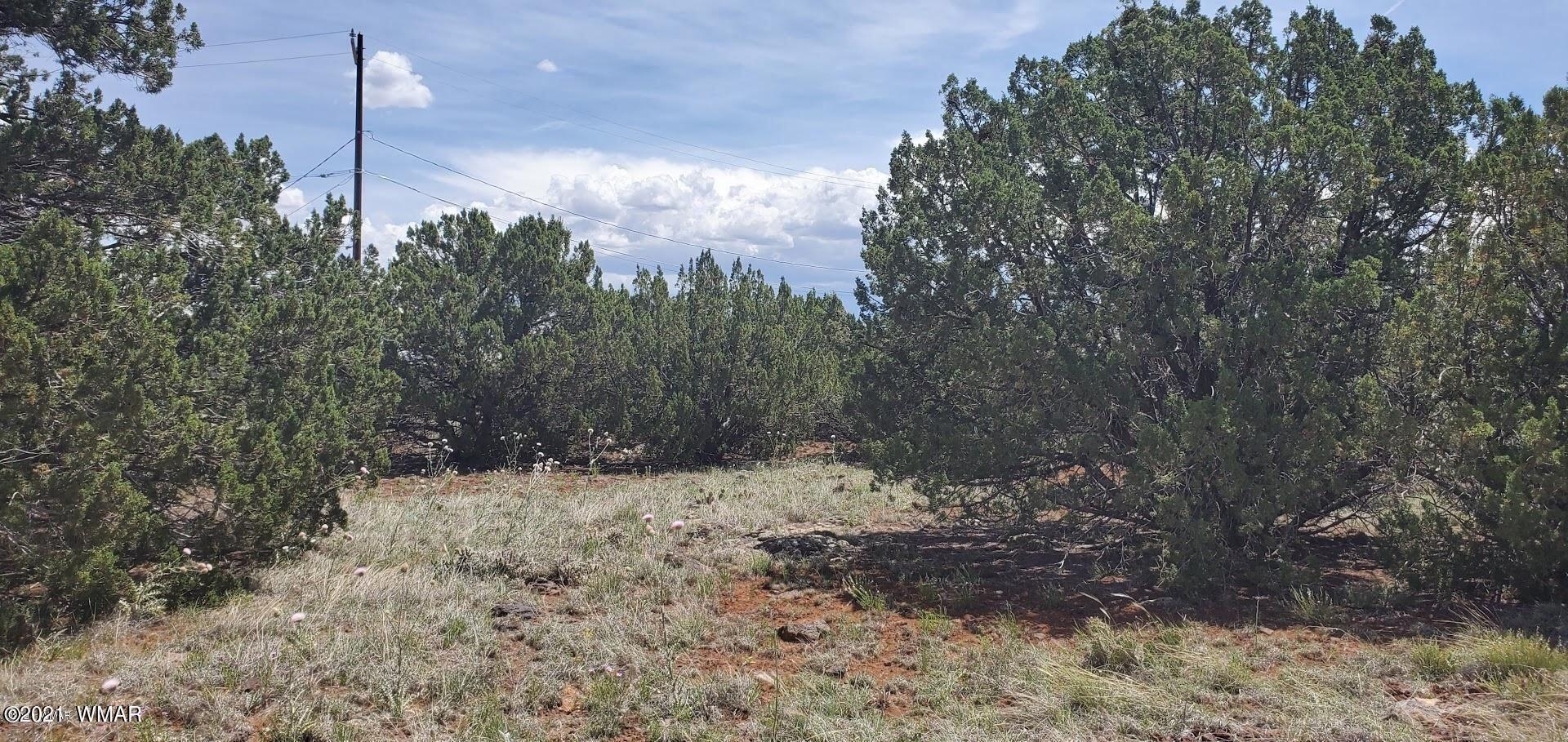 Photo for 8451 Cochise Circle, Show Low, AZ 85912 (MLS # 235829)