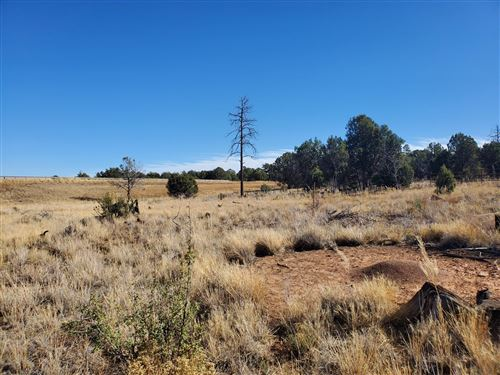 Photo of 5341 Black Forest Lane, Show Low, AZ 85902 (MLS # 232833)