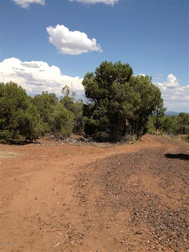 Tiny photo for 1162 Timber Ranch Road, Show Low, AZ 85901 (MLS # 231836)