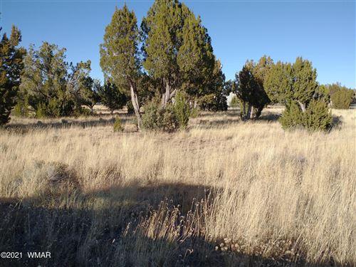 Photo of 19 County Road 5097, Concho, AZ 85924 (MLS # 237839)