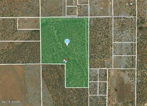 Photo of 72 acres TBD Desert Breeze Rd., Clay Springs, AZ 85923 (MLS # 218860)