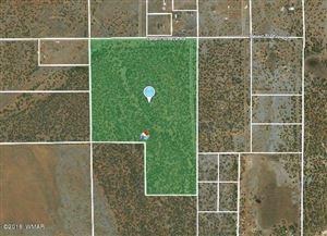 Photo of 72 acres TBD Desert Breeze Rd., Clay Springs, AZ 85923 (MLS # 218860)
