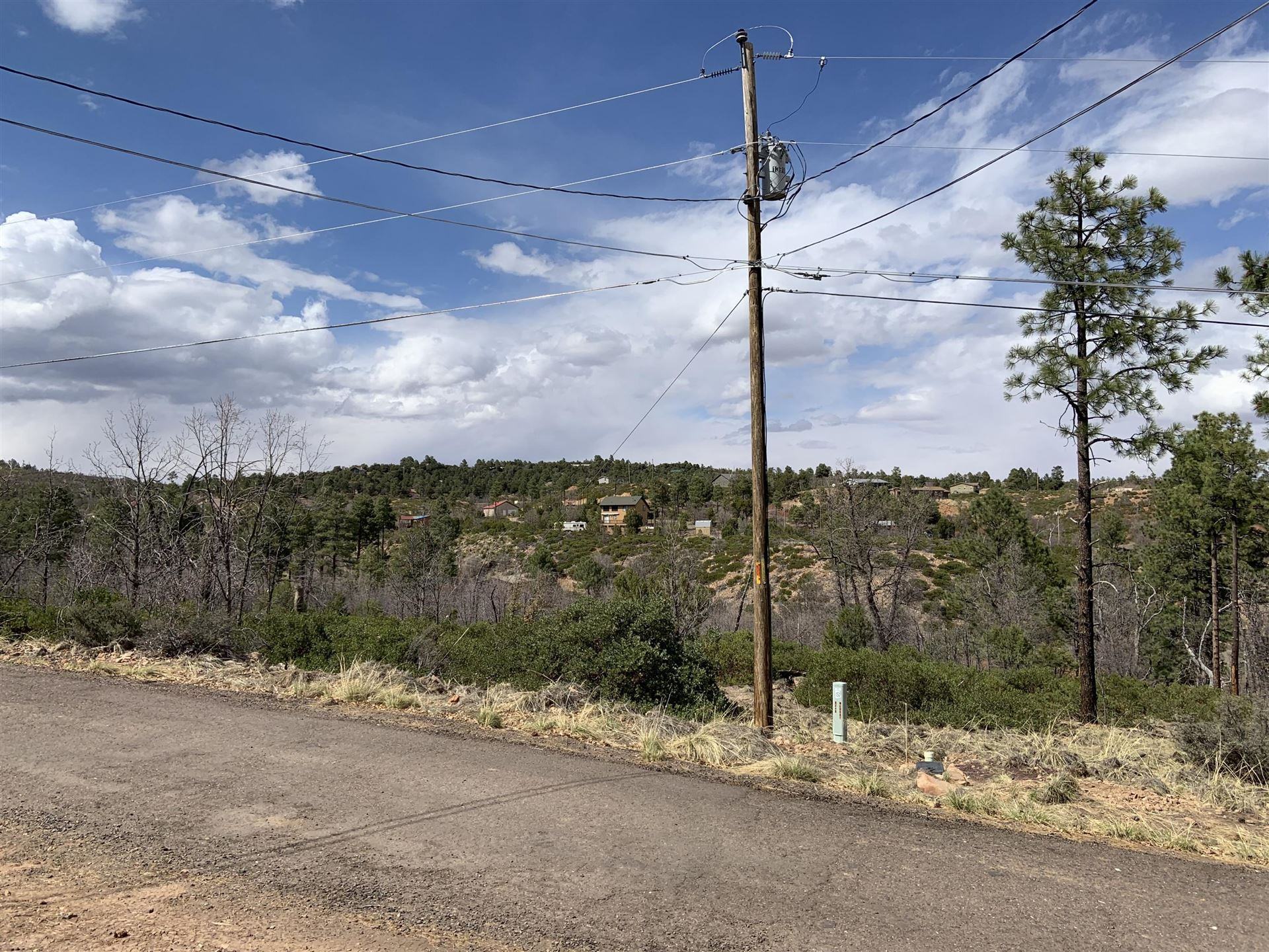 Photo for 6246 N WILDCAT Trail, Show Low, AZ 85901 (MLS # 234867)